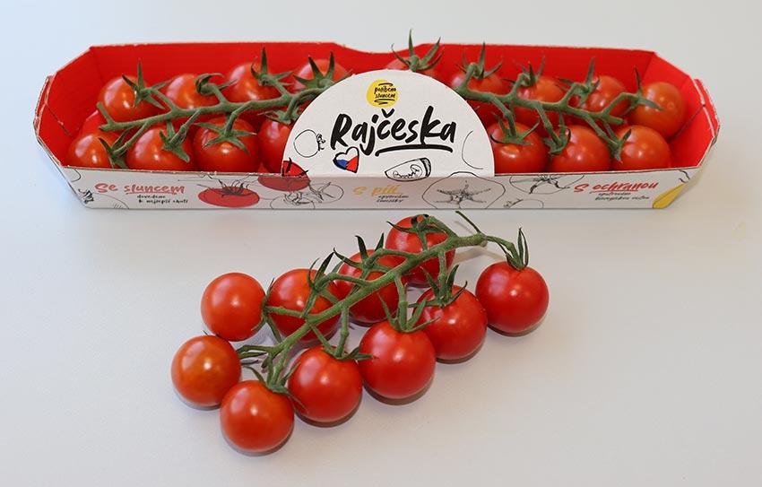 Cherry rajčata kulatá na větvičce